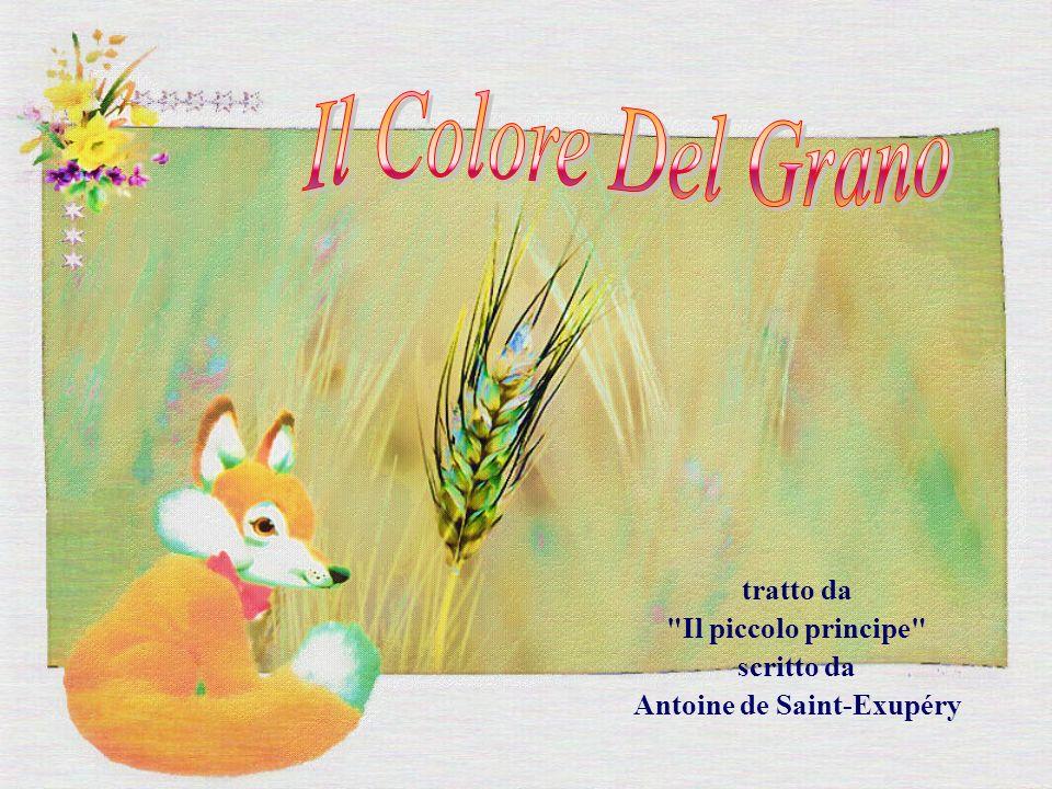 tratto da Il piccolo principe scritto da Antoine de Saint-Exupéry