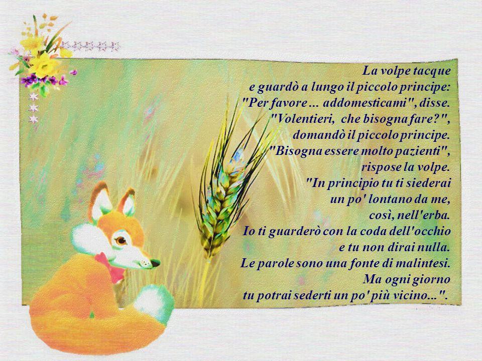 La volpe tacque e guardò a lungo il piccolo principe: Per favore ... addomesticami , disse. Volentieri, che bisogna fare ,