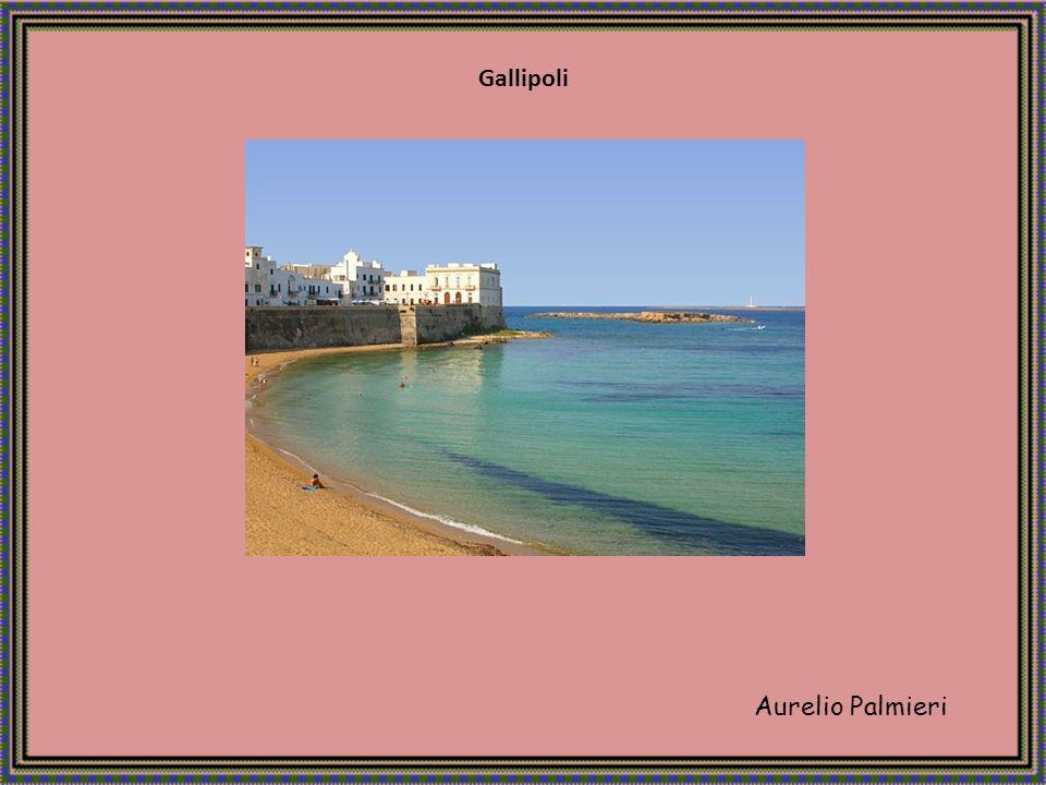 Gallipoli Aurelio Palmieri