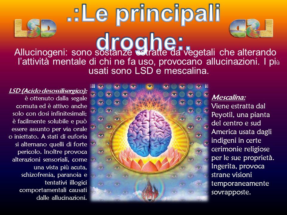 .:Le principali droghe:.
