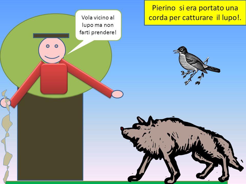 Pierino si era portato una corda per catturare il lupo!.