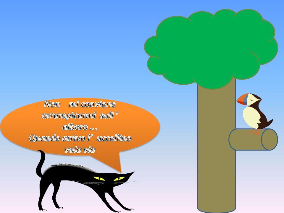 Non mi conviene arrampicarmi sull ' albero