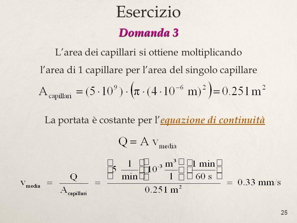 Esercizio Domanda 3 L'area dei capillari si ottiene moltiplicando