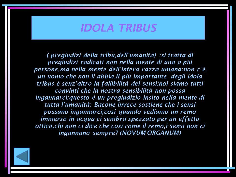IDOLA TRIBUS