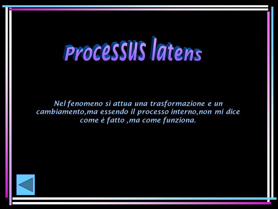 Processus latens Nel fenomeno si attua una trasformazione e un cambiamento,ma essendo il processo interno,non mi dice come è fatto ,ma come funziona.