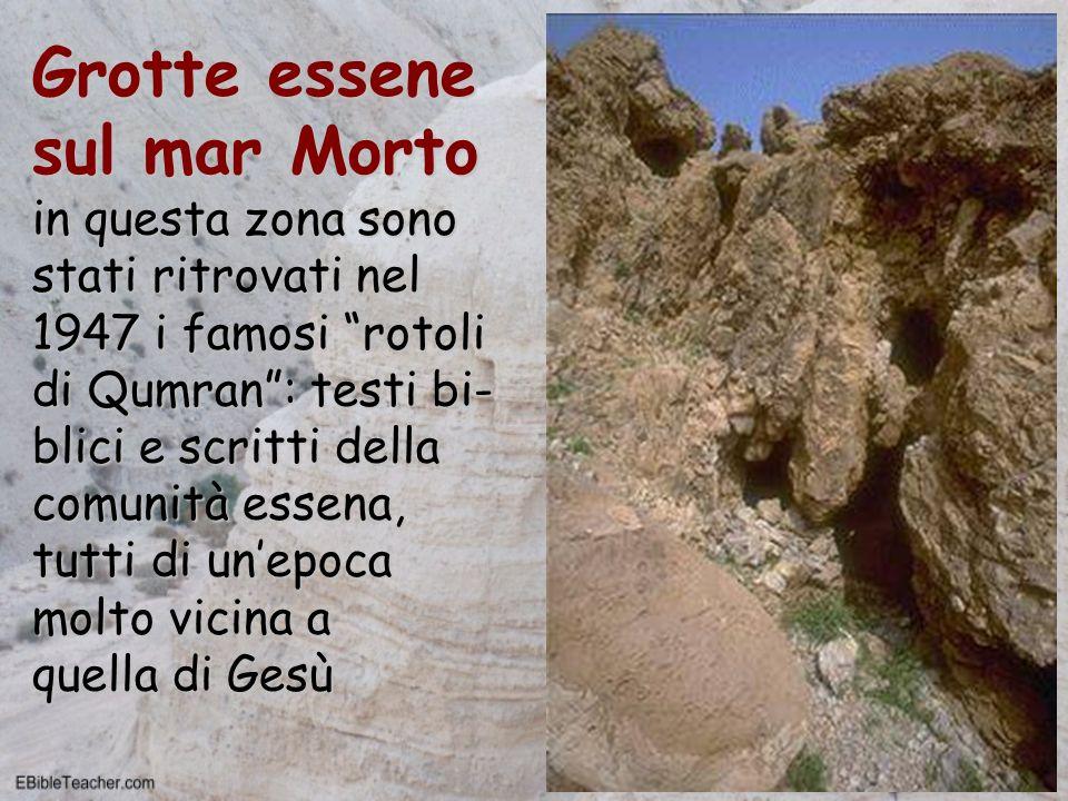 Grotte essene sul mar Morto in questa zona sono stati ritrovati nel 1947 i famosi rotoli di Qumran : testi bi-blici e scritti della comunità essena, tutti di un'epoca molto vicina a quella di Gesù