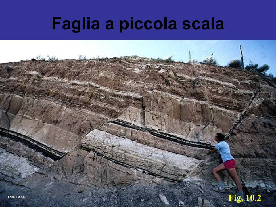 Faglia a piccola scala Fig. 10.2 Tom Bean