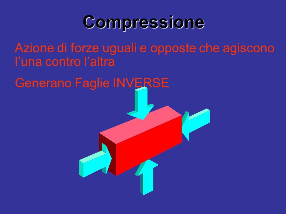 Compressione Azione di forze uguali e opposte che agiscono l'una contro l'altra.