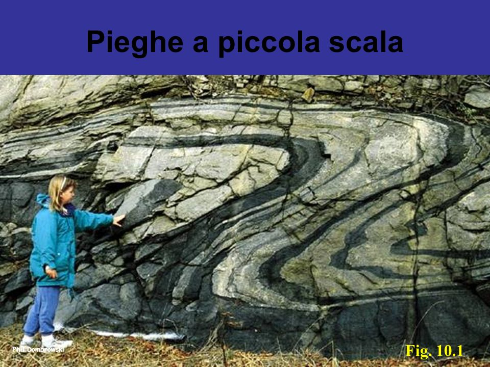 Pieghe a piccola scala Fig. 10.1 Phil Dombrowski