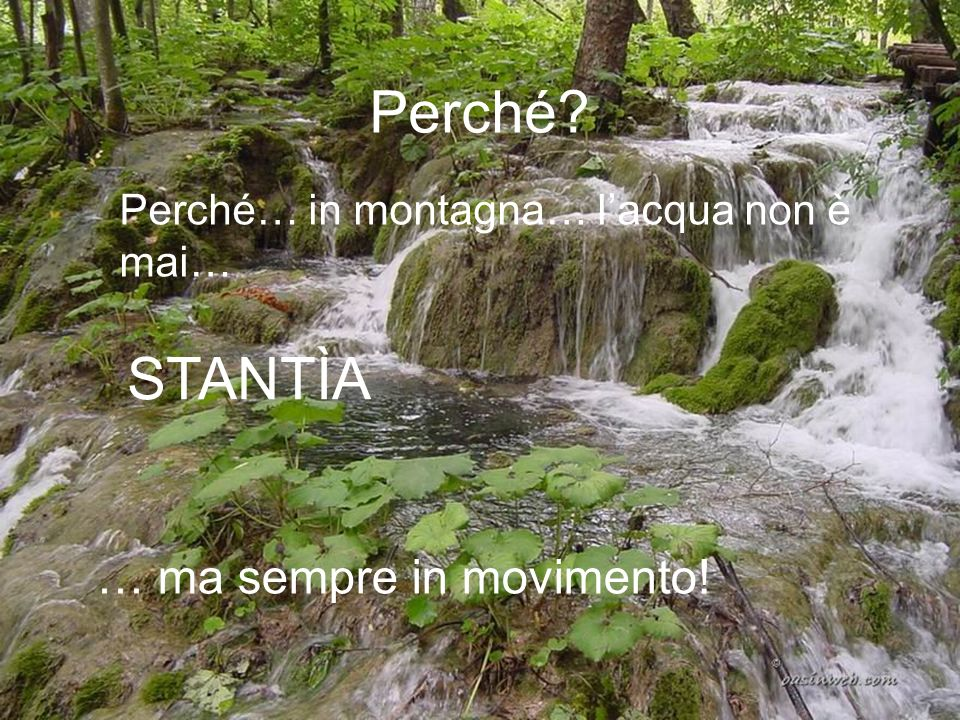Perché STANTÌA … ma sempre in movimento!
