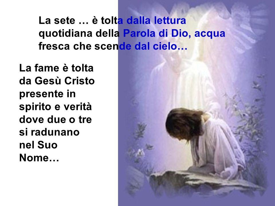 La sete … è tolta dalla lettura quotidiana della Parola di Dio, acqua fresca che scende dal cielo…