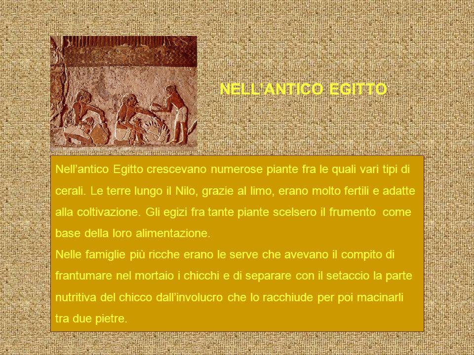 NELL'ANTICO EGITTO