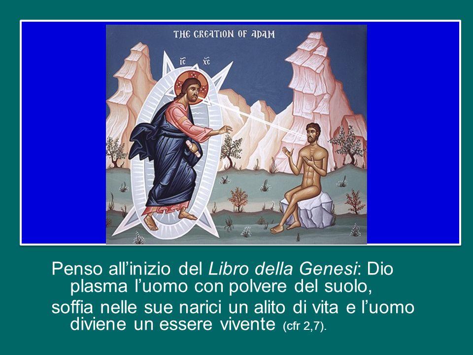 Penso all'inizio del Libro della Genesi: Dio plasma l'uomo con polvere del suolo, soffia nelle sue narici un alito di vita e l'uomo diviene un essere vivente (cfr 2,7).