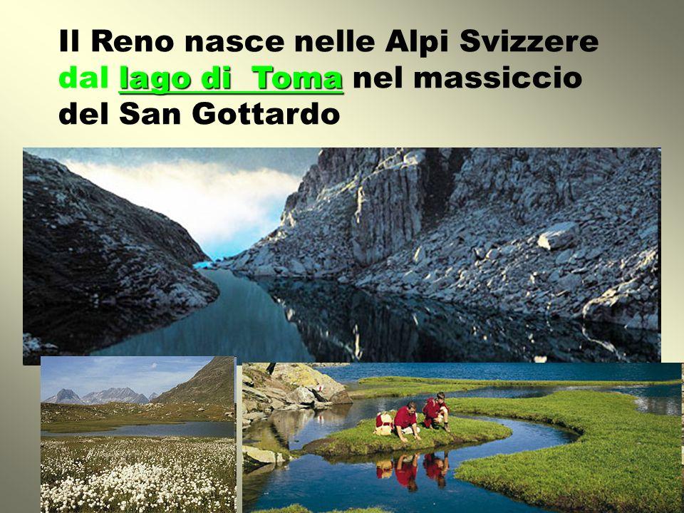 Il Reno nasce nelle Alpi Svizzere dal lago di Toma nel massiccio del San Gottardo
