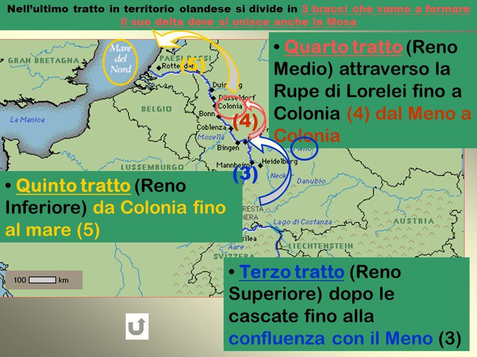 Quinto tratto (Reno Inferiore) da Colonia fino al mare (5)