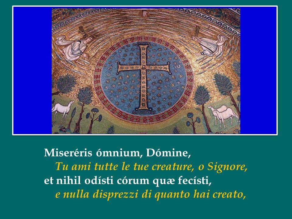 Miseréris ómnium, Dómine, Tu ami tutte le tue creature, o Signore, et nihil odísti córum quæ fecísti, e nulla disprezzi di quanto hai creato,