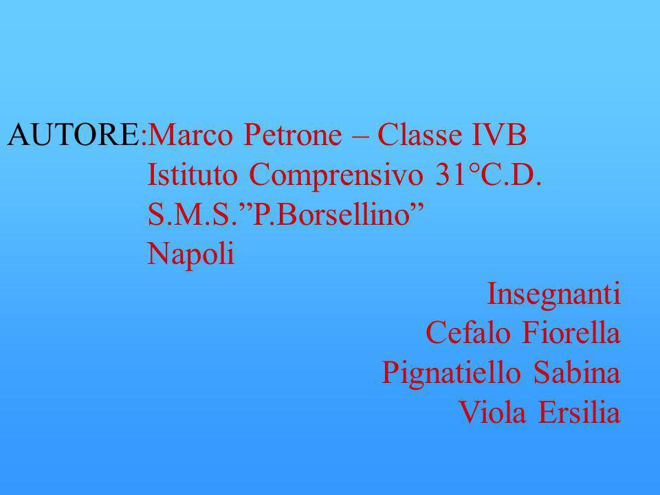 AUTORE:Marco Petrone – Classe IVB Istituto Comprensivo 31°C.D.