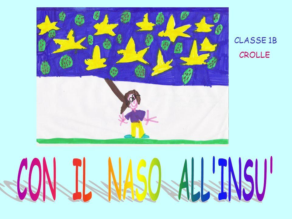 CLASSE 1B CROLLE CON IL NASO ALL INSU