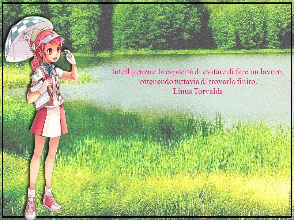 Intelligenza è la capacità di evitare di fare un lavoro,