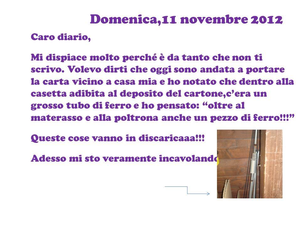Domenica,11 novembre 2012 Caro diario,