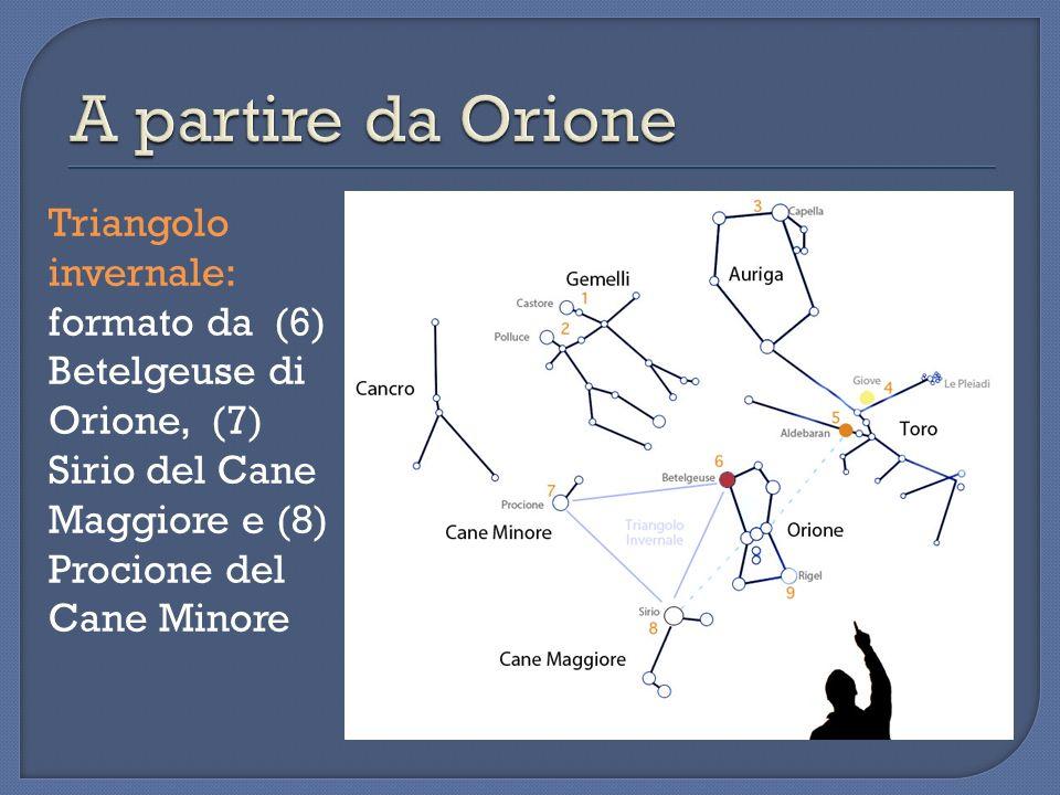 A partire da Orione Triangolo invernale: formato da (6) Betelgeuse di Orione, (7) Sirio del Cane Maggiore e (8) Procione del Cane Minore.