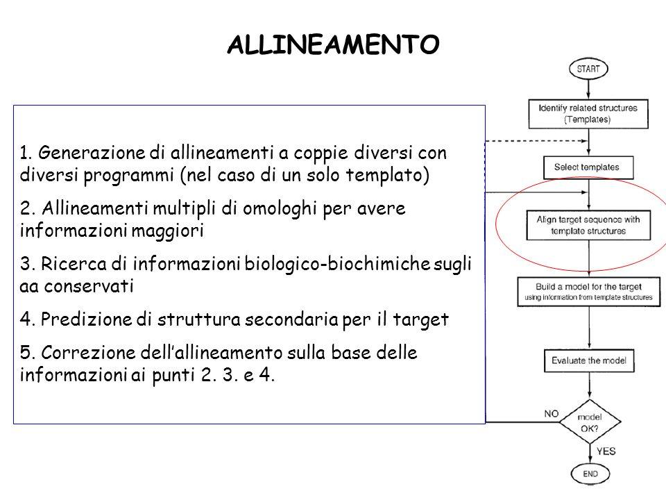 ALLINEAMENTO 1. Generazione di allineamenti a coppie diversi con diversi programmi (nel caso di un solo templato)