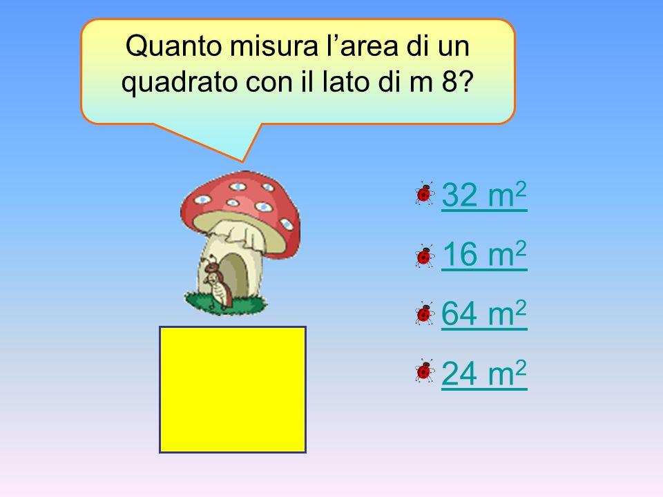 Quanto misura l'area di un quadrato con il lato di m 8