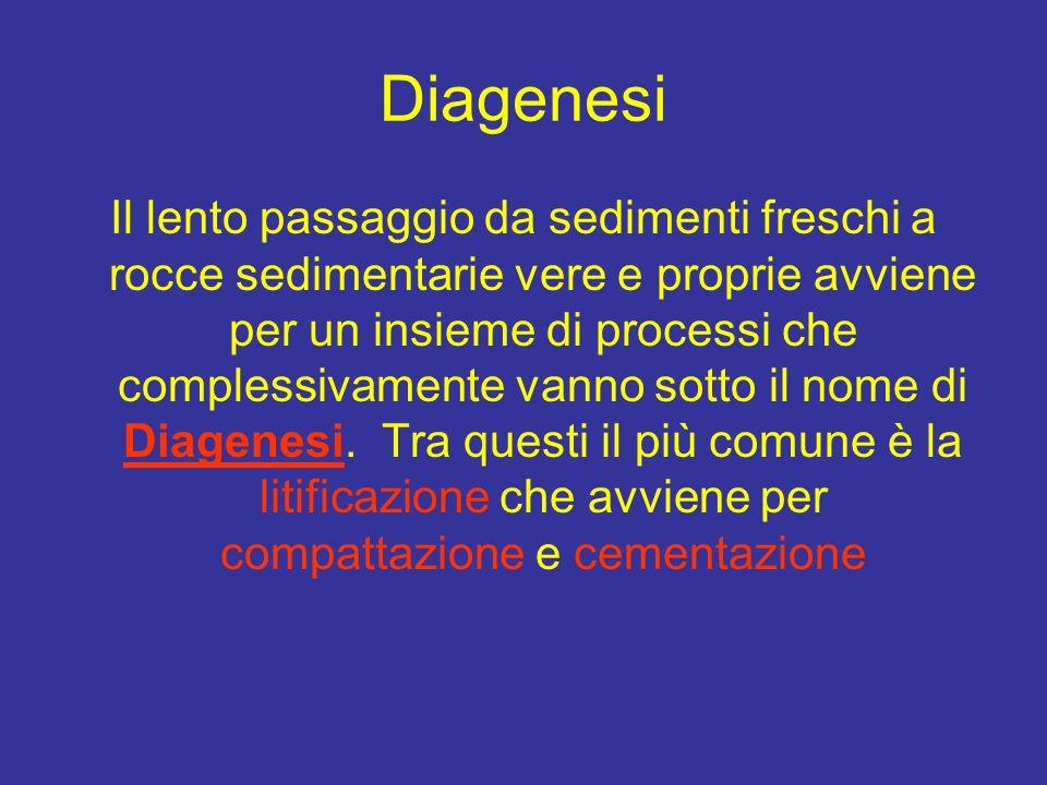 Diagenesi