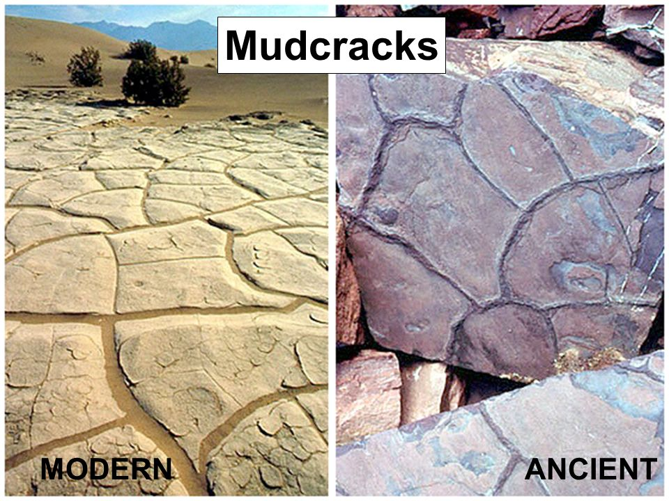Mudcracks MODERN ANCIENT