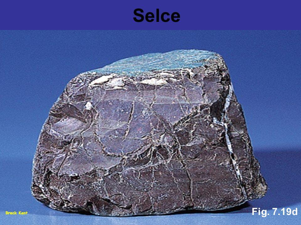 Selce Fig. 7.19d Breck Kent