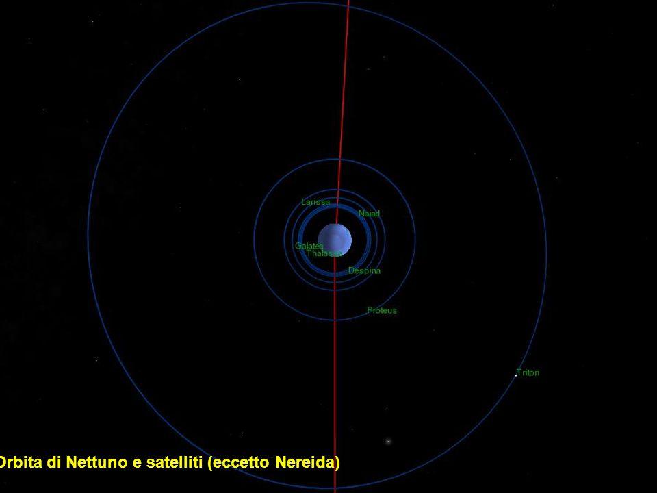 Orbita di Nettuno e satelliti (eccetto Nereida)