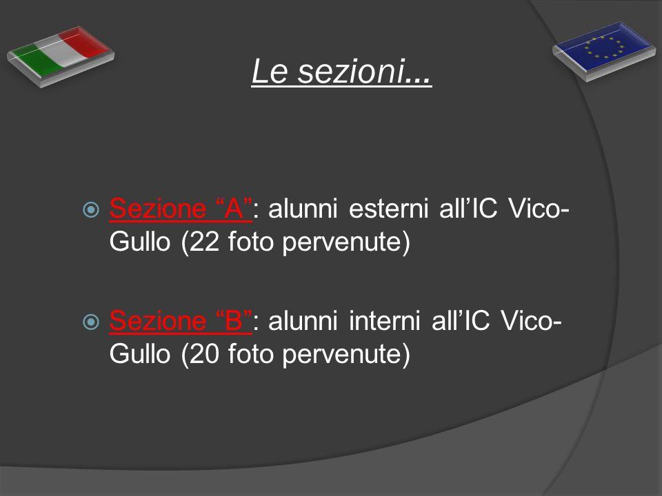 Le sezioni… Sezione A : alunni esterni all'IC Vico-Gullo (22 foto pervenute) Sezione B : alunni interni all'IC Vico-Gullo (20 foto pervenute)