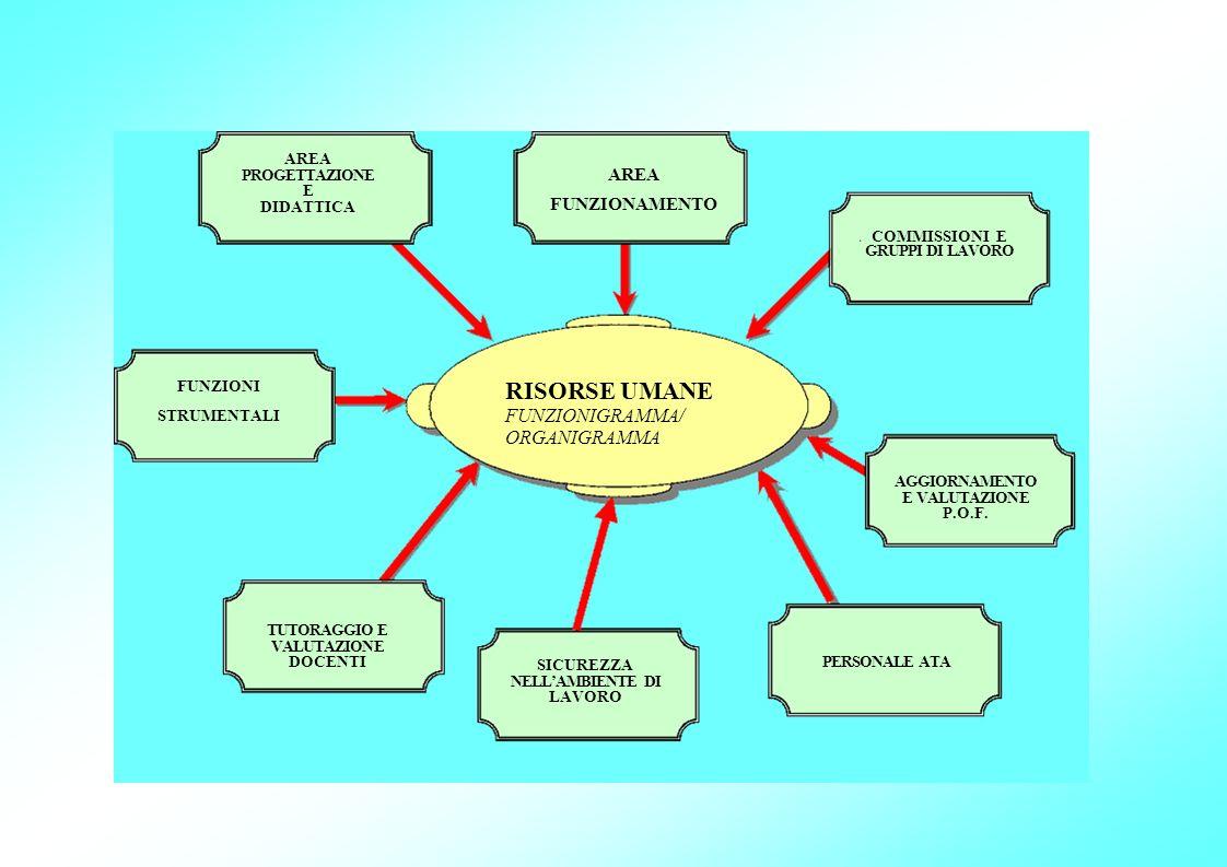 RISORSE UMANE FUNZIONIGRAMMA/ ORGANIGRAMMA