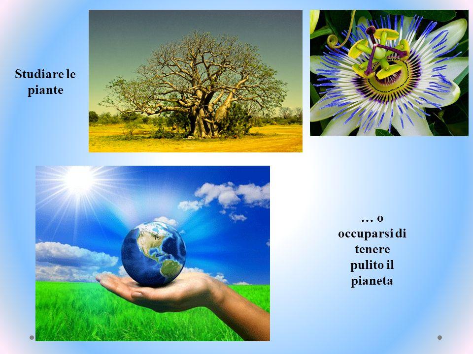 … o occuparsi di tenere pulito il pianeta