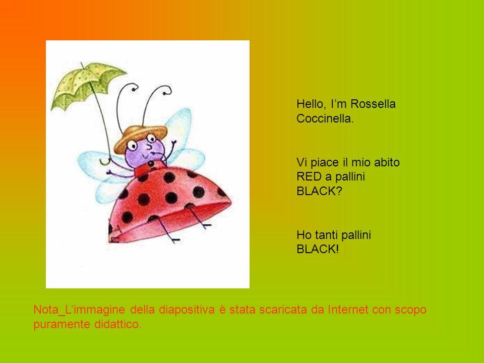 Hello, I'm Rossella Coccinella.