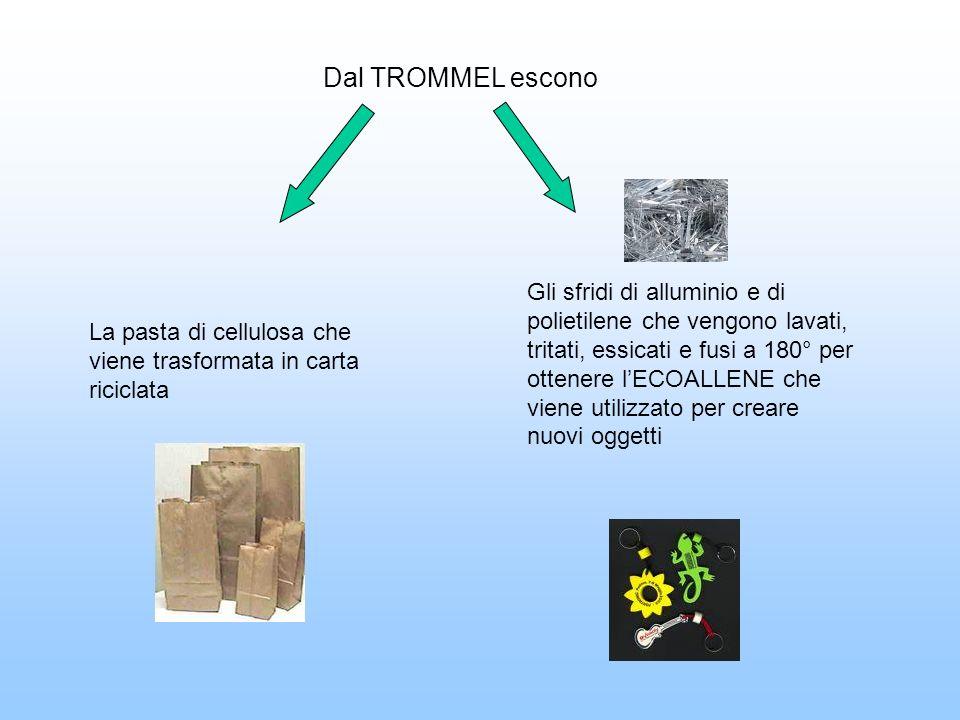 Dal TROMMEL escono La pasta di cellulosa che viene trasformata in carta riciclata.