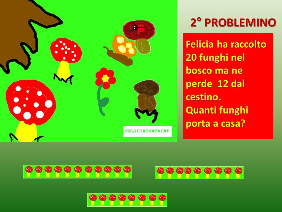 2° PROBLEMINO Felicia ha raccolto 20 funghi nel bosco ma ne perde 12 dal cestino.