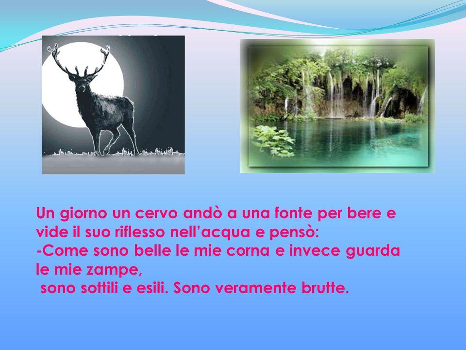 Un giorno un cervo andò a una fonte per bere e vide il suo riflesso nell'acqua e pensò: