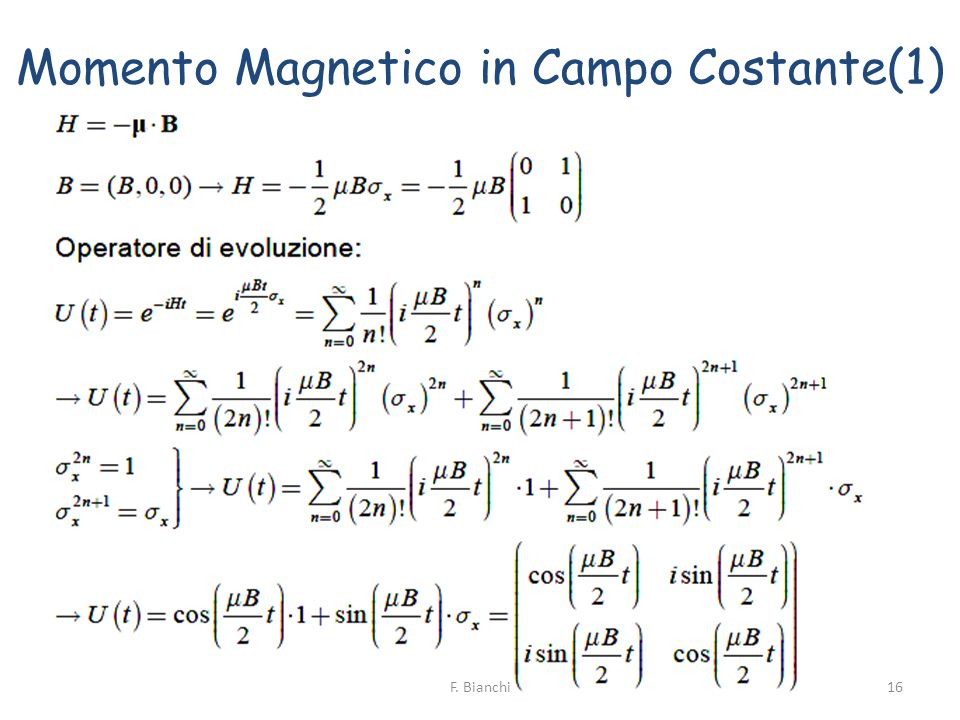 Momento Magnetico in Campo Costante(1)