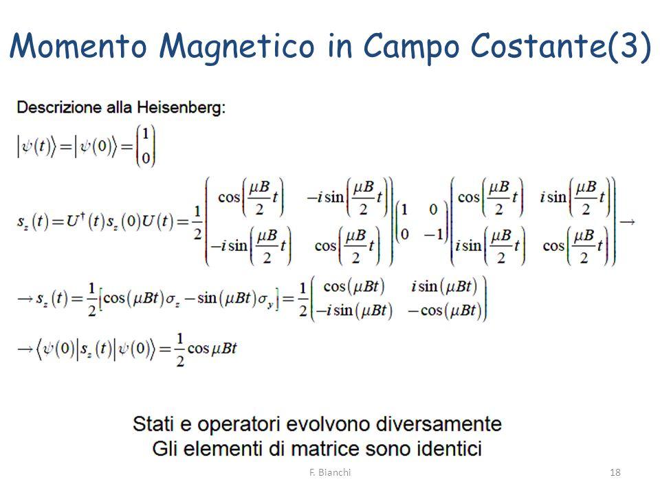 Momento Magnetico in Campo Costante(3)