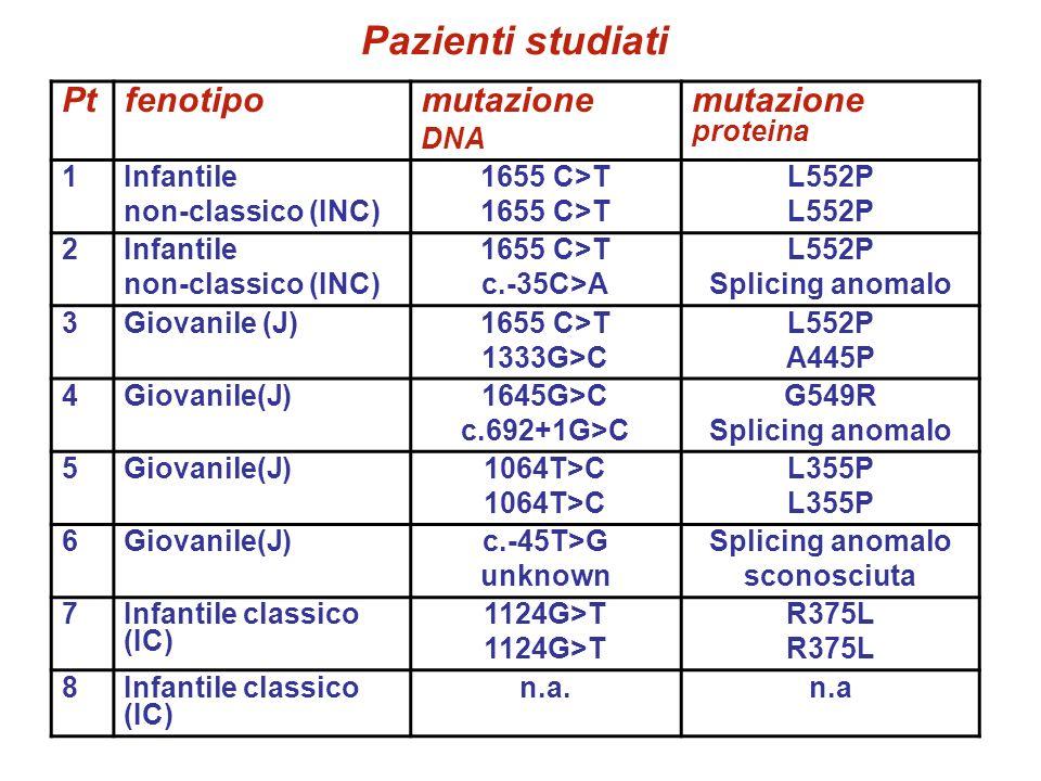 Pazienti studiati Pt fenotipo mutazione mutazione proteina DNA 1