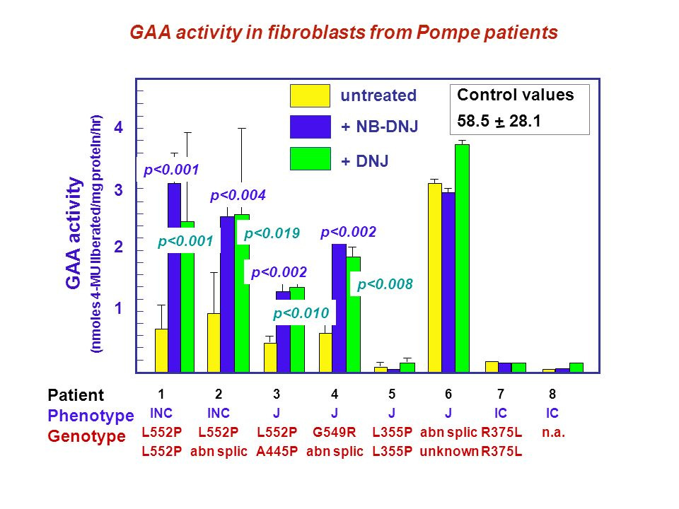GAA activity in fibroblasts from Pompe patients GAA activity