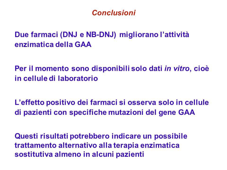ConclusioniDue farmaci (DNJ e NB-DNJ) migliorano l'attività enzimatica della GAA.