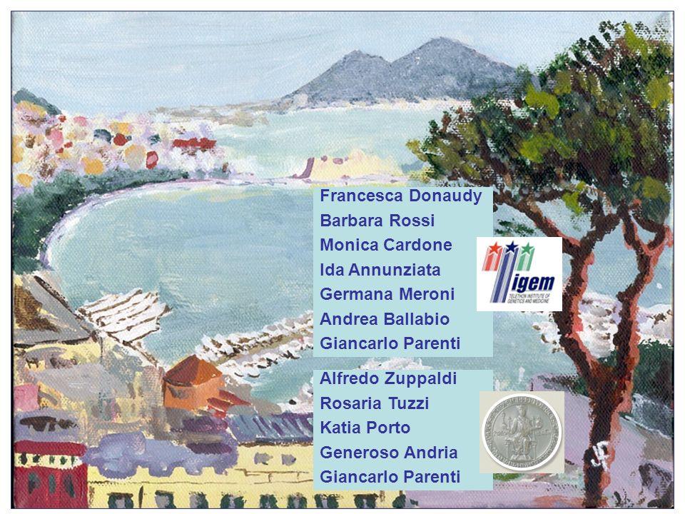 Francesca Donaudy Barbara Rossi. Monica Cardone. Ida Annunziata. Germana Meroni. Andrea Ballabio.