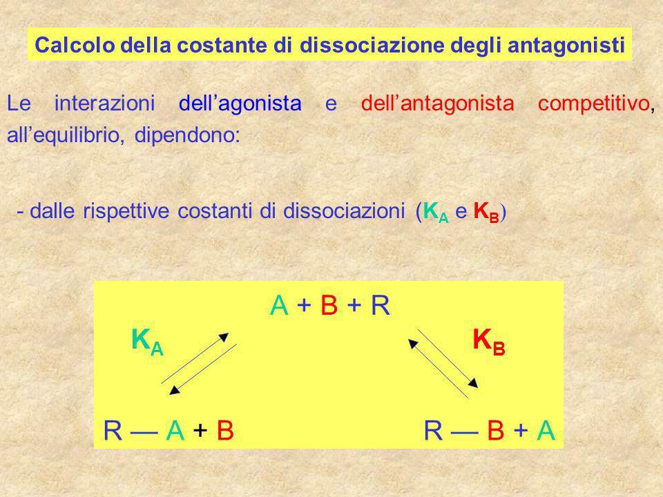 Calcolo della costante di dissociazione degli antagonisti