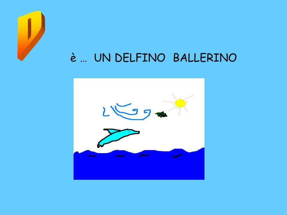 è … UN DELFINO BALLERINO