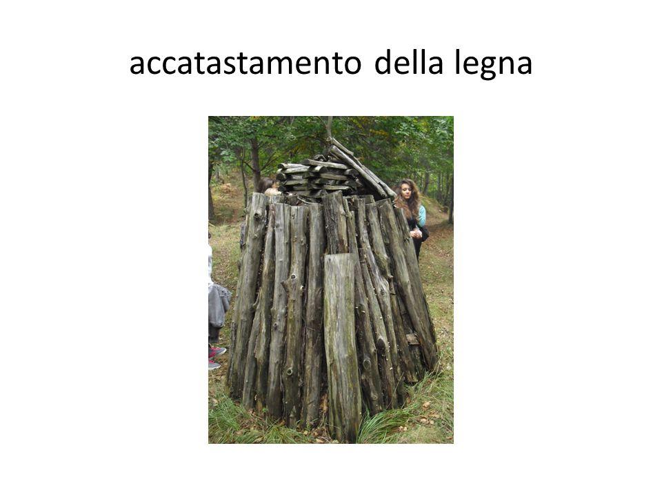 accatastamento della legna