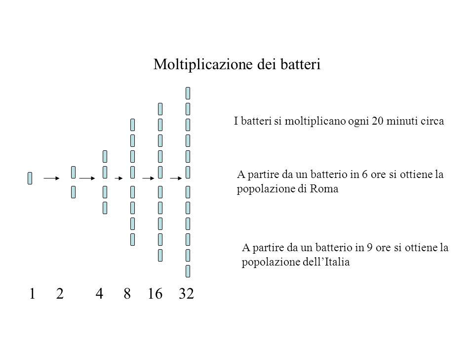 Moltiplicazione dei batteri