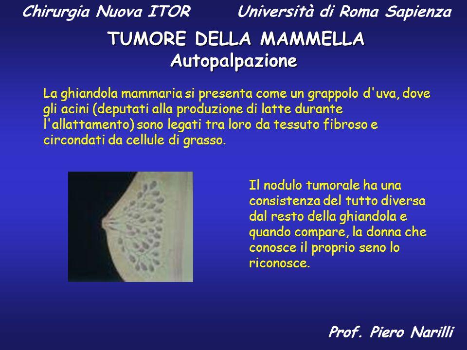 Chirurgia Nuova ITOR Università di Roma Sapienza