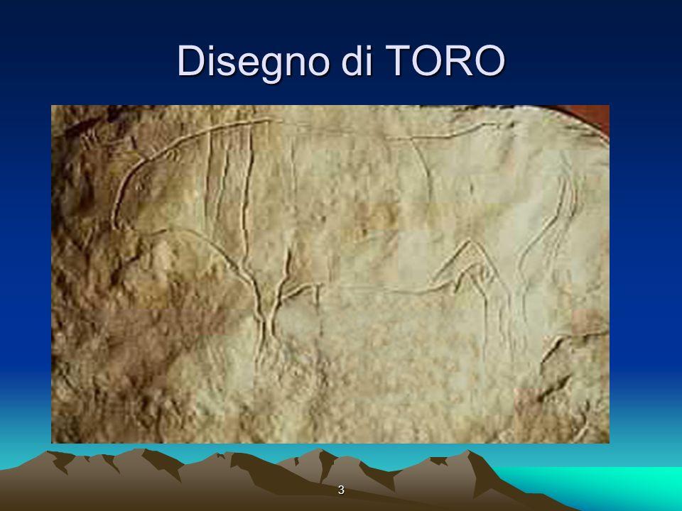 Disegno di TORO 3